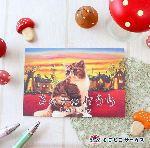 ポストカード 「きの子のおうち」