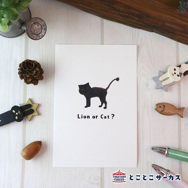 ポストカード 「 I'm a cat」